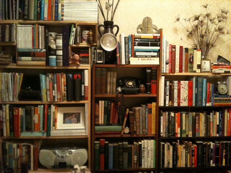 Jose's book shelf