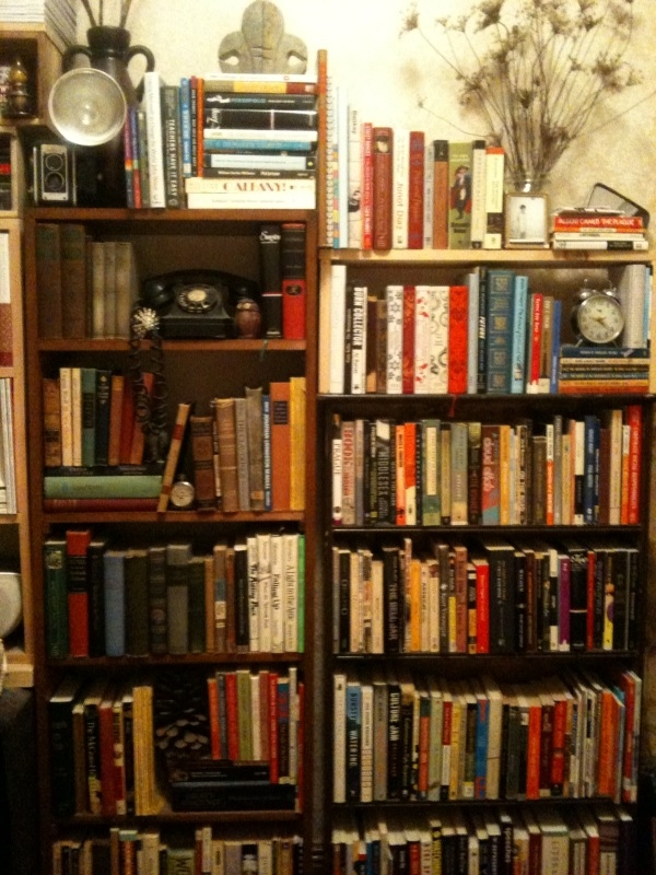 Alexandra's book shelf